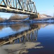 Railway bridge through small river — Stock Photo