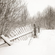 Stock Photo: Old fence on white snow
