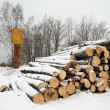 Heap firewood on white snow — Stock Photo