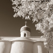 Foto de Stock  : Tree in snow against christichurch, sepia