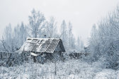 Old rural house in snow — Stock Photo