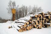 Kupie Drewno kominkowe na białym śniegu — Zdjęcie stockowe