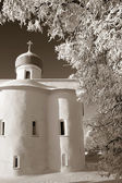 Orthodox christian church amongst white branches, sepia — Stock Photo