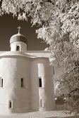 Orthodox christian church amongst white branches, sepia — Stock Photo