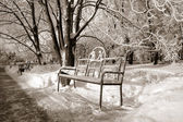 Bench in winter park, sepia — Photo