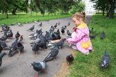 摂食ハトの少女. — ストック写真