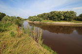 Tara River near the village of Okunevo. — Stock Photo