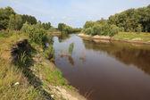 Tara River near the village of Okunevo. — Stock Photo