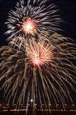 Beautiful fireworks in the night sky. — Stock Photo
