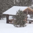 Snowfall on the background of wooden gazebo in the woods. - Stock Photo