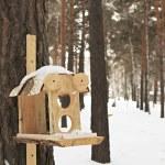 リスと冬の森の中の鳥の送り装置 — ストック写真
