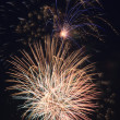 Beautiful fireworks in the night sky. — Stock Photo #26067323