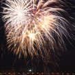 Beautiful fireworks in the night sky. — Stock Photo #36620857