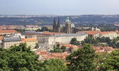 Saint Vitus Cathedral and Prague Castle. View from Petrin Lookou — Stock Photo