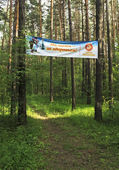 "Inscription in a summer forest: ""In skiing - for health"" — Foto de Stock"