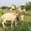 Little girl tenderly stroking goat. — Stockfoto #40265165