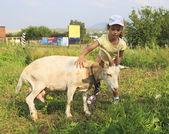 Little girl tenderly stroking a goat. — 图库照片