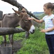 Little girl tenderly stroking a donkey. — Stock Photo #47187821