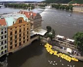 Catamarans and swans on the river Vltava in Prague. — Stock Photo