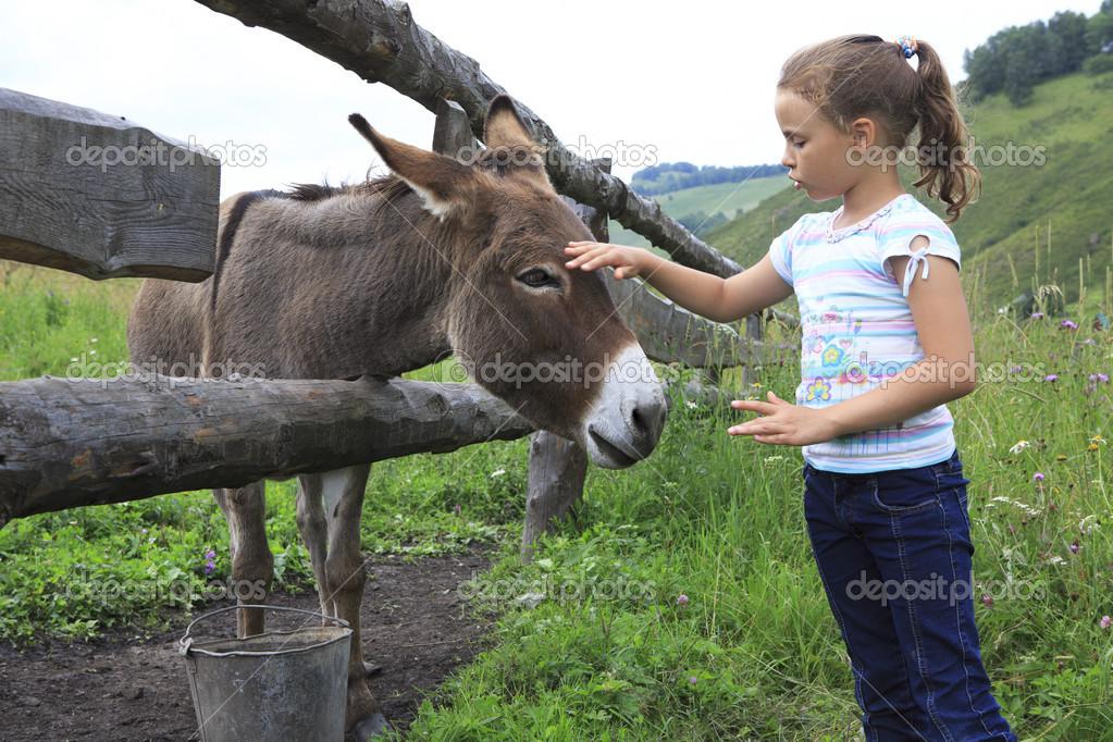девушка гладит осла