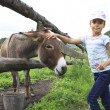 Little girl tenderly stroking a donkey. — Stock Photo #50574665