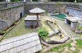 Moat to the predators in castle Konopiste. — Stock Photo