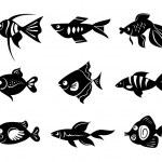 conjunto de iconos de peces — Vector de stock  #12634191