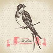 Oiseau hirondelle, illustration dessinées à la main — Vecteur