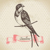 Swallow bird, hand-drawn illustration — Stock Vector