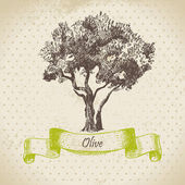 Olive tree. Hand drawn illustration — Stock Vector