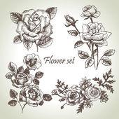 Ensemble floral. illustrations dessinées de roses à la main — Vecteur