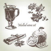 Set of mulled wine, fruit and spices, hand drawn illustrations — Stock Vector