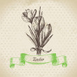 Vintage Easter background with crocus flowers. Hand drawn illust - Stock Vector