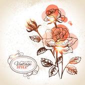 Vintage floral background. Hand drawn illustration of rose — Stock Vector