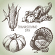 Thanksgiving Day set. Hand drawn vintage illustrations — Stock Vector