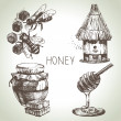 Honey set. Hand drawn vintage illustrations — Stock Vector