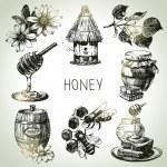 Honey set. Hand drawn vintage illustrations — Stock Vector #36536483