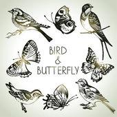 鸟和蝴蝶的设定,手绘插图 — 图库矢量图片