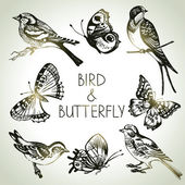 Bird and butterfly set, hand drawn illustrations — Stock Vector