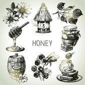 Honey set. Hand drawn vintage illustrations — Stock Vector