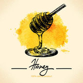 Honey background with hand drawn sketch — Stock vektor