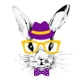 Hipster rabbit — Stock Vector