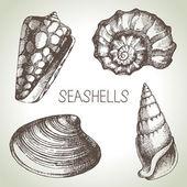 çizilmiş seashells el — Stok Vektör