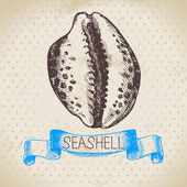 Seashell sketch. — Stock Vector