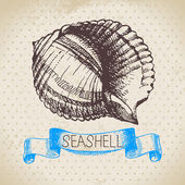 Seashell sketch. — Stock Vector