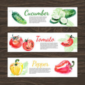 Vegetables organic food banner — Stock Vector