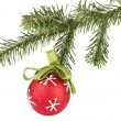 Christmas ball on fir tree — Stock Photo