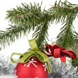 Christmas decor met fir tree — Stockfoto