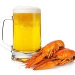 Beer mug and boiled crayfishes — Stock Photo #13635662