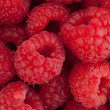 Raspberry closeup - Stock Photo